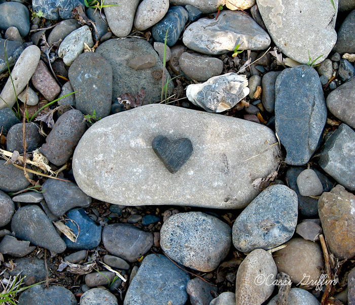 Bella Dia heart rock photograph by Cassi Griffin