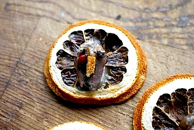 dried orange slice turkey craft