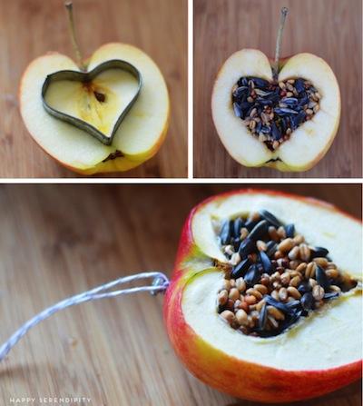 heart apple and seed wild bird treat