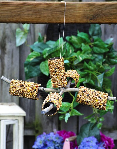feeding wild birds craft