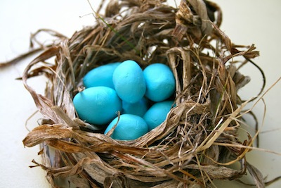 build a nest and clay eggs DIY