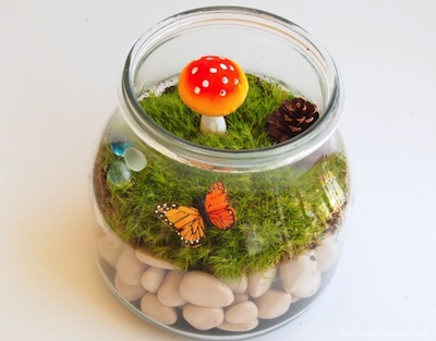 easy terrarium for kids with moss and mushrooms
