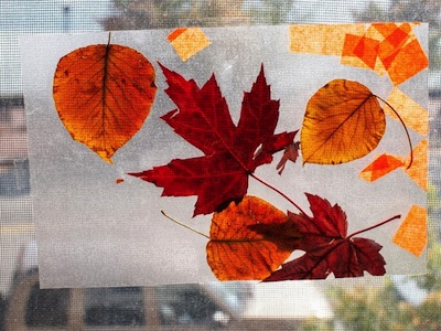 fall crafts for toddlers fall leaves in contact paper