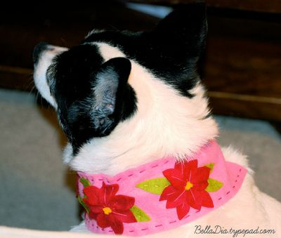 Bella Dia Christmas Book and Craft Advent felt collar for dogs DIY