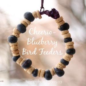 homemade cheerio and blueberry bird feeder kids can make
