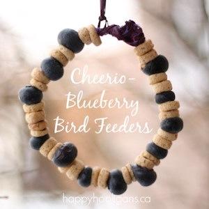 homemade cheerio and blueberry bird feeder kids can make