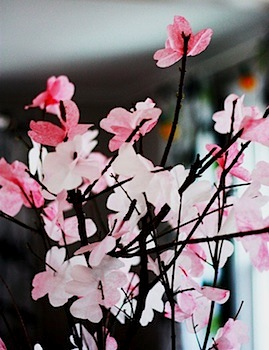 coffee filter cherry blossoms on twigs