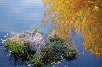Bella Dia fall pond reflection