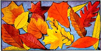 Leaves3_copy