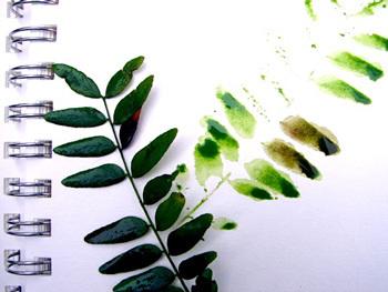 Campcreekwatercolorprint