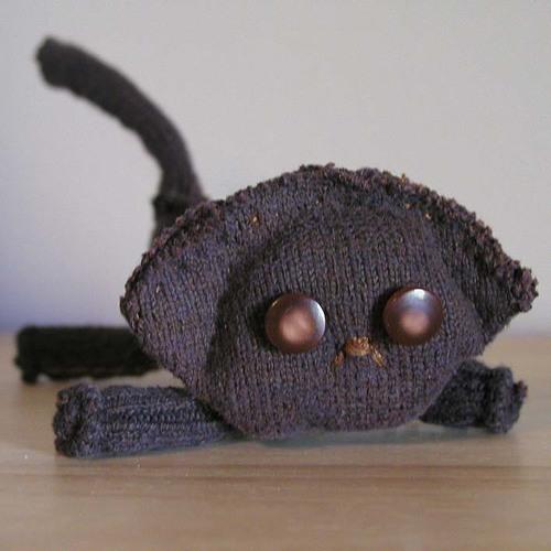 Sock Kitten: Angus