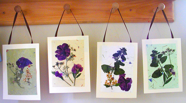 Pressed flower cards things to make and do crafts and for Dried flowers for crafts